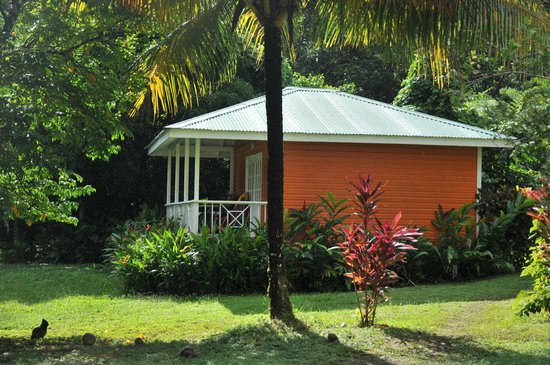 Mermaid's Secret - Riverside Retreat: The Carib Cabin