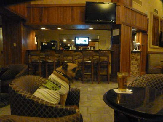 MCM Elegante Lodge & Resort : Lobby Bar with Comfortable seating and center of Lobby Action