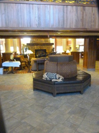 MCM Elegante Lodge & Suites : Fun Places to Hang Out and People Watch in the Lobby