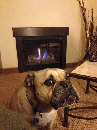 MCM Elegante Lodge & Suites : No pics please. Just enjoying my in-room fireplace.