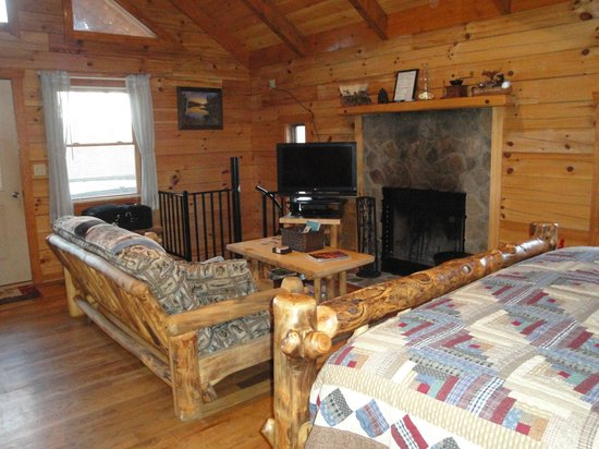 Lydia Mountain Cabins: High ceilings add to the charm and openess.