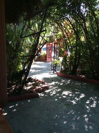 Casa Valeria Boutique Hotel: vue lorsque l'on sort de notre chambre #9