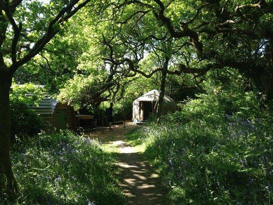 Yurtworks: bath and shower yurt and dishwashing area