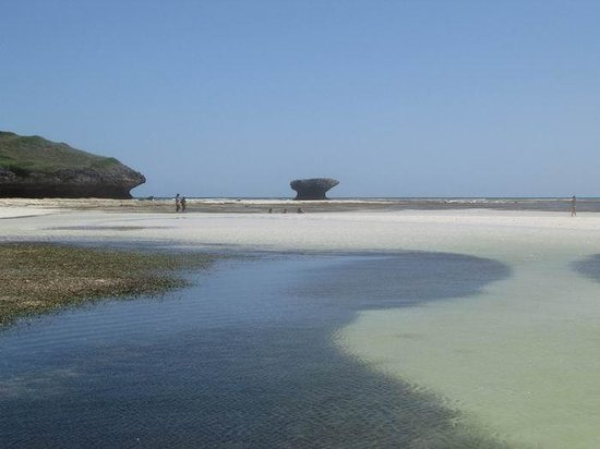 Zawadi Residence : bassa marea