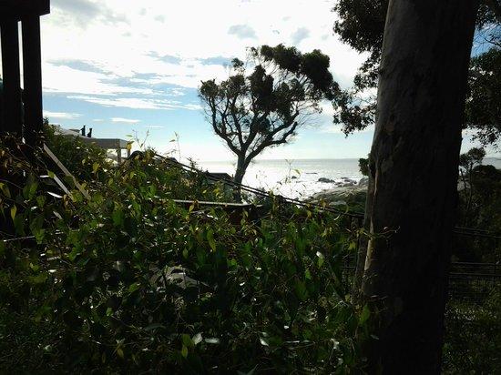 Camps Bay Retreat : Vue de la chambre 5