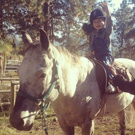 Wildhorse Mountain Guest Ranch : Child friendly horses!