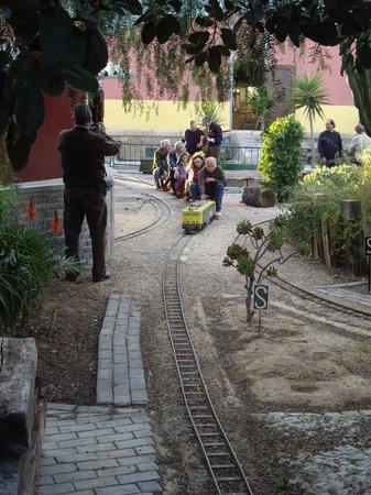 """Asociación Alicantina de Amigos del Ferrocarril (Associació Alacantina d'Amics del Ferrocarril): Train 5"""""""