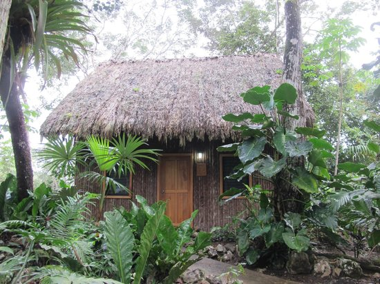 Mariposa Jungle Lodge : Our cabana