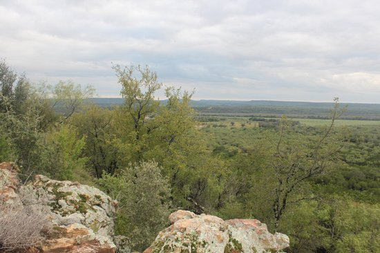 Wildcatter Ranch : View