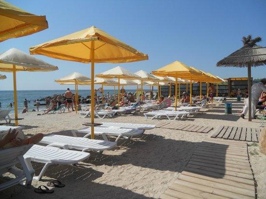 Arkada: Пляж