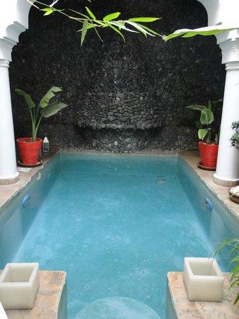 Riad L'Orchidee: piscina interna