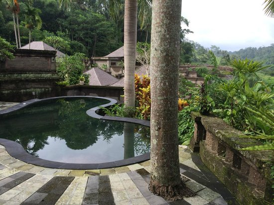 The Payogan Villa Resort & Spa: Private pool from room