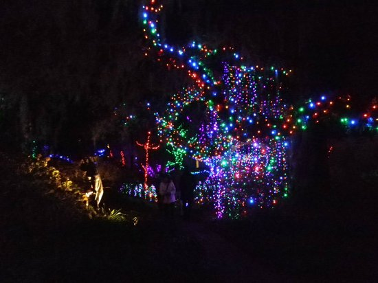 Brookgreen Gardens : Nights of a Thousand Lights 1