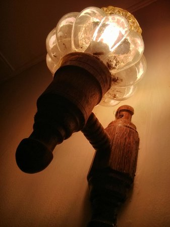 Madugalle Friendly Family Guest House : Hundreds of bugs in lamp