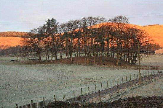 Baldiesburn Bed & Breakfast: Winter hilltop