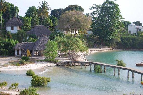 Mangrove Lodge: Vista dal ristorante