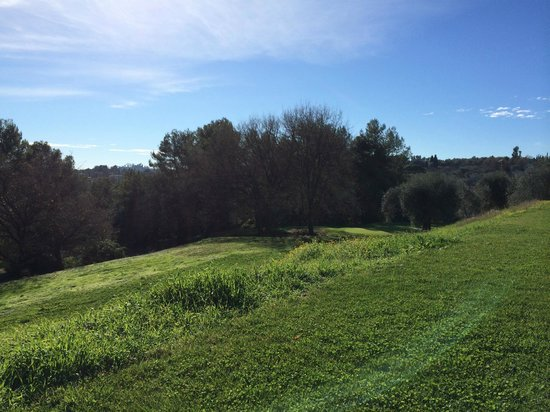 Club Med Opio Provence : View looking out from the olive grove