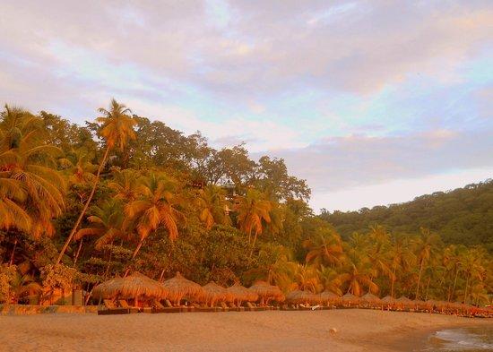 Anse Chastanet : beach