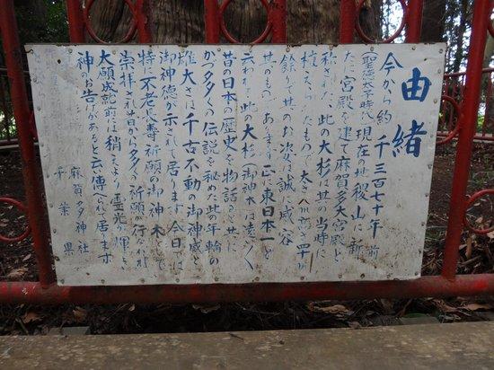 Makata Shrine : 御由緒