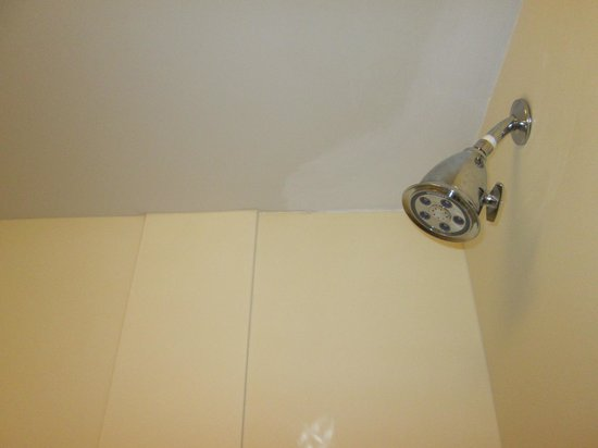 Courtyard Toronto Markham : Showerhead/ Tiles could be replaced