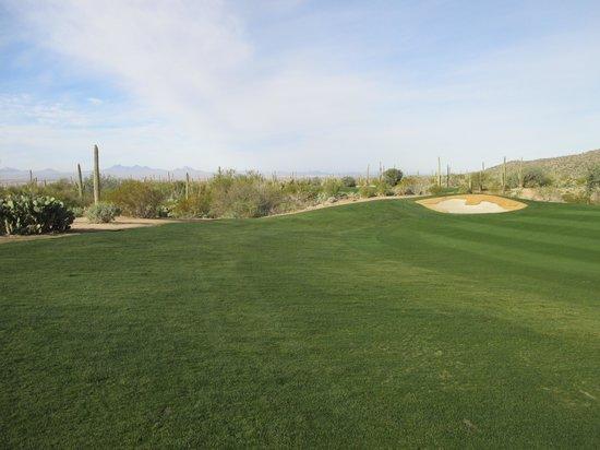 Del Lago Golf Club: Del Lago