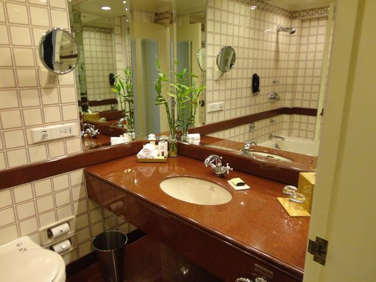 The Taj Mahal Palace: Bathroom - too old and small
