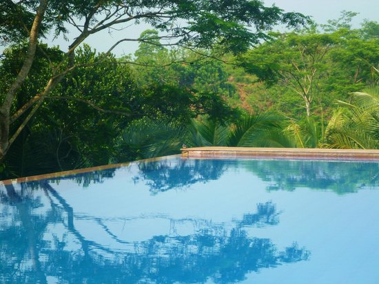 Niyagama House : Pool