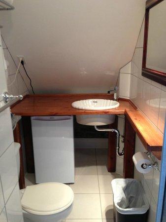 Manoir de L'Esplanade: small bathroom but very functional