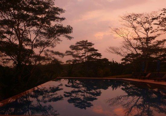 Niyagama House : Pool at sunset