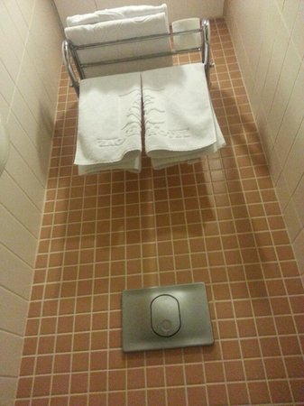 Zagreb Hotel: bathroom towels