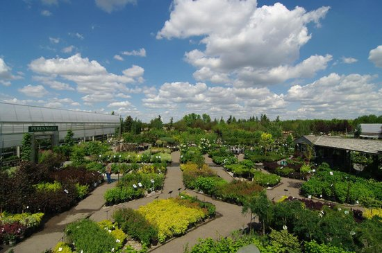 Greenland Garden Centre
