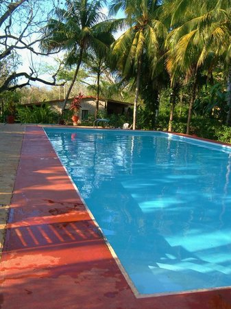 Hacienda Chichen: The pool is always great!