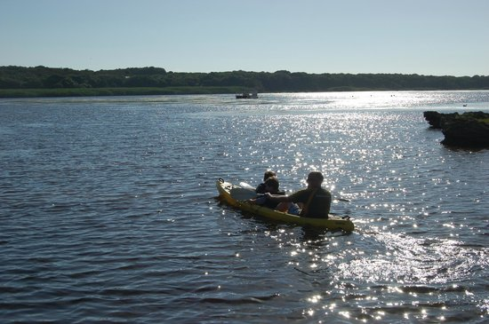 MOSAIC Lagoon Lodge: Optional Kayaking - amazing