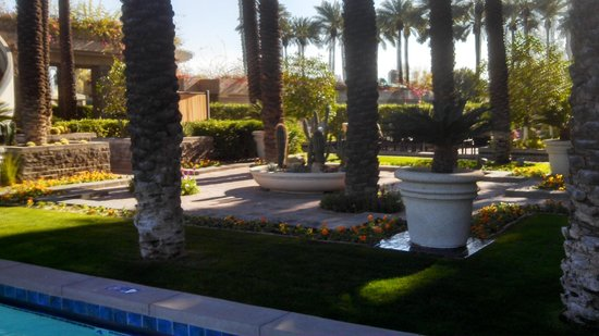 Hyatt Regency Scottsdale Resort and Spa at Gainey Ranch: Many  places to enjoy