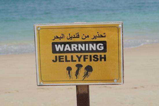 Shangri-La Al Husn Resort & Spa: Sign on the Beach