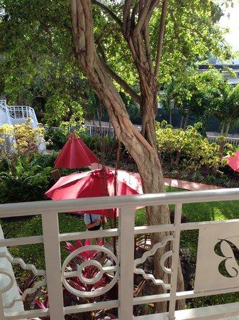 Tradewinds Apartment Hotel: Garden