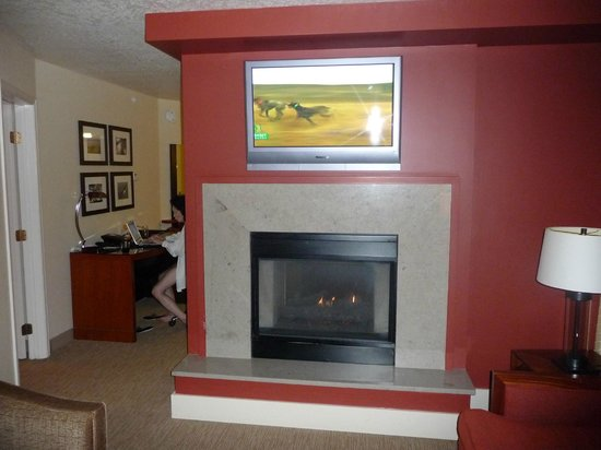 The Paramount Hotel : See-through fireplace