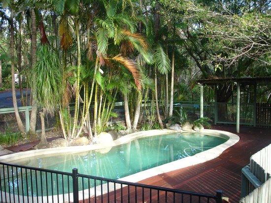 Kondalilla Eco Resort: Picnic Creek's private pool