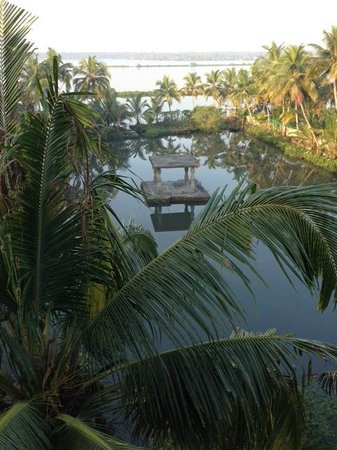 Shravanam Greens : View from the terrace