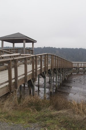 Nisqually National Wildlife Refuge: Nisqually Foot Bridge