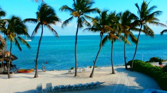 Chesapeake Beach Resort : Room View