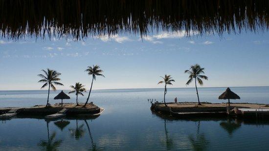 Chesapeake Beach Resort : Cove view from Tiki hut