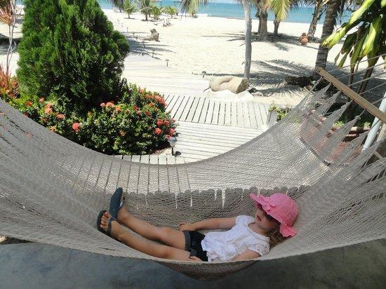 La Posada de los Tumpis: Its a hard life...