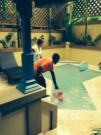 Hermosa Cove - Jamaica's Villa Hotel: Ryan working hard