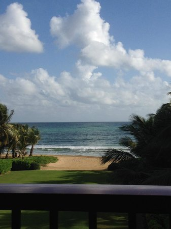 The St. Regis Bahia Beach Resort, Puerto Rico: View from Fern