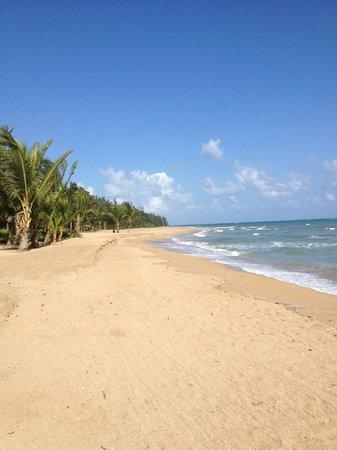 The St. Regis Bahia Beach Resort, Puerto Rico: An Empty Beach :)