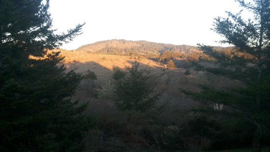 Costanoa Coastal Lodge & Camp: view from 30 C