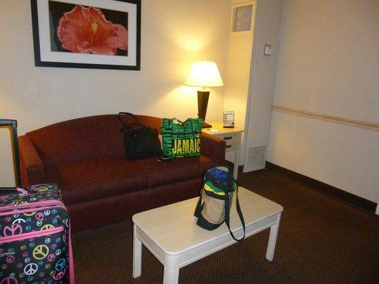 Baymont Inn & Suites Tampa Near Busch Gardens: Sofa