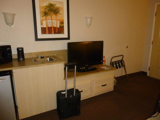 Baymont Inn & Suites Tampa Near Busch Gardens: TV