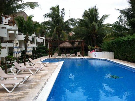 Petit Lafitte : Pool area